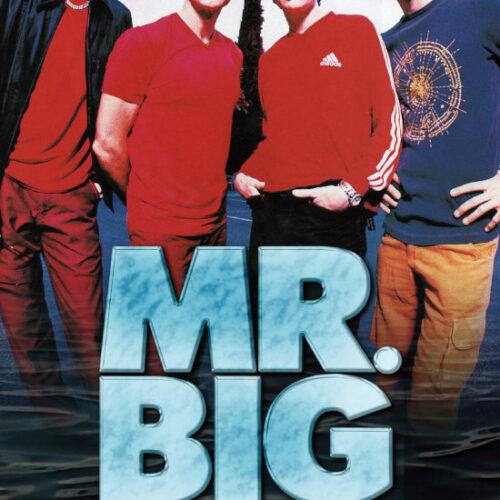 MR. BIG / 1999-2001